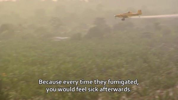 Fumigation, courtesy of IMDb